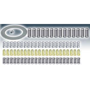 THM 700/4L60E: 3-4 Clutch Spring Kit  (HD-HP)